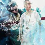 Baby Rasta y Gringo - Dime Si Vas A Volver MP3