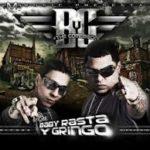 Baby Rasta y Gringo The Comeback