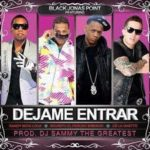 Black Jonas Point Ft. Randy, Secreto, De La Ghetto - Dejame Entrar MP3