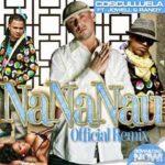 Cosculluela Ft Jowell y Randy - Nananau (Remix) MP3
