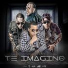 J Alvarez Ft. Baby Rasta & Gringo Y Divino - Te Imagino MP3