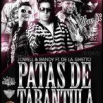 Jowell Y Randy Ft. De La Ghetto - Patas De Tarantula MP3