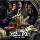 Ñejo Ft. Gotay, Anuel AA, Yomo, Pusho, Almighty, D.OZi Y Jamby El Favo - Esta Cabron Remix