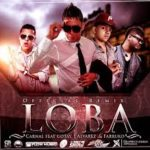 Carnal Ft. J Alvarez, Farruko Y Gotay - Loba MP3