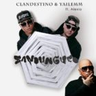 Clandestino Y Yailemm Ft Alexio La Bestia - Sandungueo