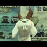 Jamsha - CabroeMonte MP3