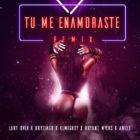 Lary Over Ft. Brytiago, Bryant Myers Y Anuel AA - Tu Me Enamoraste Remix