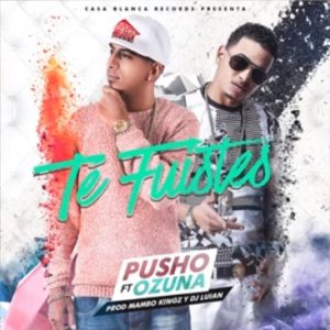 Pusho Ft. Ozuna - Te Fuiste