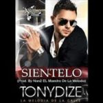 Tony Dize - Sientelo MP3