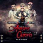 Wambo El Mafiaboy Ft. Val2 El De Las Voces Y Baby Johnny - Nadie Te Amara Como Yo Te Quiero