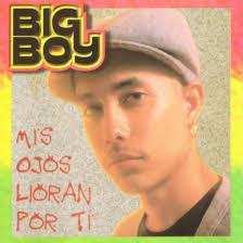 Big Boy - Mis Ojos Lloran Por Ti MP3