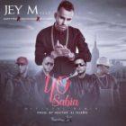 Jey M Ft. Alexis y Fido, De La Ghetto Y Carlitos Rossy - Yo Sabia Remix