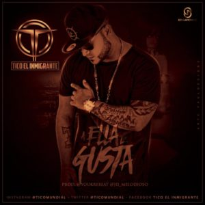 Tico El Inmigrante - A Ella Le Gusta MP3