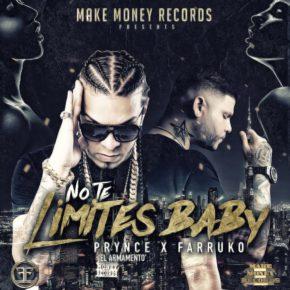 Prynce El Armamento Ft Farruko - No Te Limites Baby MP3