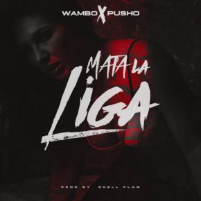 Wambo El Mafiaboy Ft. Pusho - Mata La Liga MP3