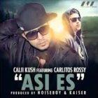 Calii Kush Ft. Carlitos Rossy - Asi Es MP3