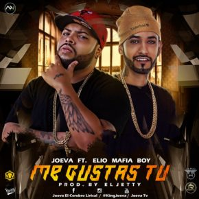 Joeva Ft. Elio Mafiaboy - Me Gustas Tu MP3