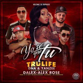 Trulife (DNA & Yanzee) Ft. Alex Rose & Dalex - Yo Se Que Tu MP3