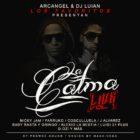 Arcangel Y DJ Luian - La Calma Live (2015)