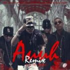 Mr. Javy The Flow Ft. Pacho y Cirilo Y Angel Doze - Auuh Remix MP3