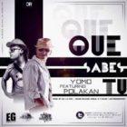 Yomo Ft. Polakan - Que Sabes Tu MP3