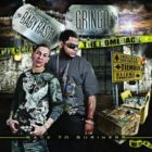 Baby Rasta Y Gringo - The Comeback (Back To Business) (2008) Album
