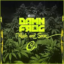 Damn Frog Ft. MC Ceja - Kush and Sour MP3