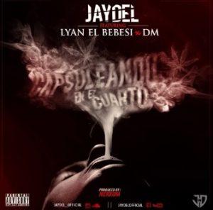 Jaydel Ft. Lyan Y DM - Capsuleando En El Cuarto MP3
