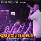 Cosculluela - Concierto en Tampa FL (2010) Album
