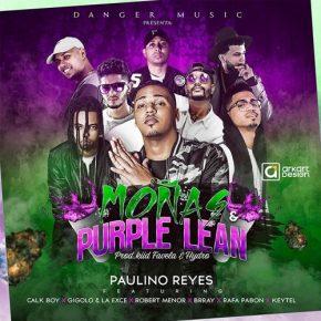Paulino Rey Ft. Gigolo Y La Exce, Brray, Rafa Pabon, Robert Menor, Keytel Y Calk Boy - Moñas Y Purple Lean MP3