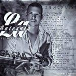 Gaona - La Mina De Oro (La Antesala) (2013) Album