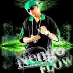 Ñengo Flow - Greatest Hits 2 (2010) Album