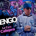 Ñengo Flow - La Cara Callejera (2010) Album