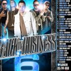 DJ Sincero Presents Back In Business 6 (2013) Album