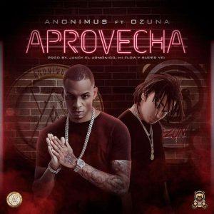 Anonimus Ft. Ozuna - Aprovecha MP3