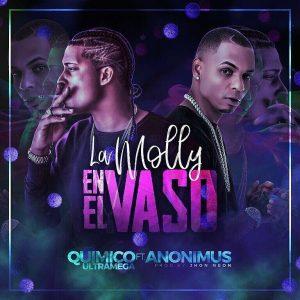 Quimico Ultra Mega Ft. Anonimus - La Molly En El Vaso MP3