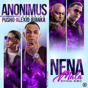 Anonimus Ft. Pusho, Alexio La Bruja Y Juanka El Problematik - Nena Mala Remix MP3
