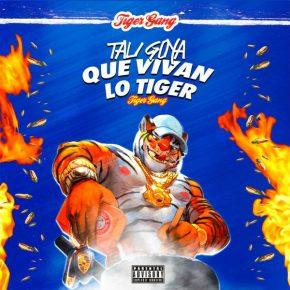 Tali - Que Vivan Lo Tiger Album Descargar