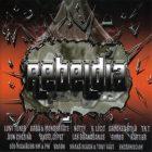 Rebeldia (2005) Album MP3
