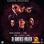 Xander El Imaginario Ft. Juanka, Sammy Y Falsetto, Endo, Kodigo - Si Quieres Volver Remix MP3