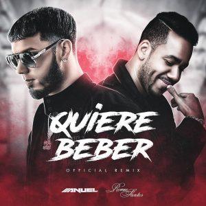Descargar Anuel AA Ft. Romeo Santos - Quiere Beber Remix MP3